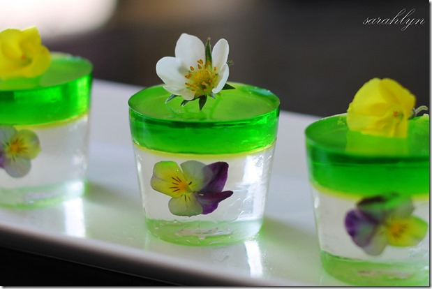 jelly shots - cropfixW