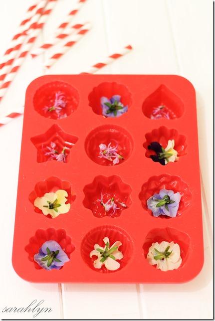 ice flowers 005fixW