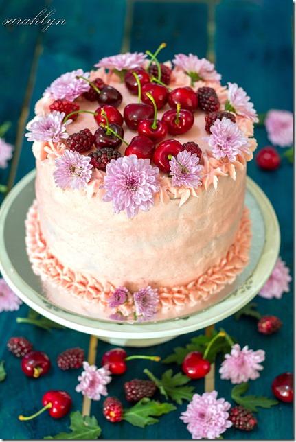 neapolitan cake 016fade correctionW