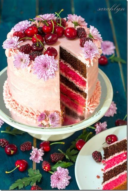 neapolitan cake 034fadecorrW_thumb[1]