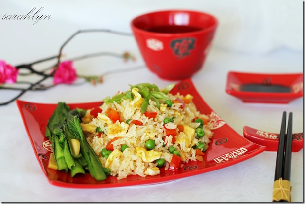 fried rice 003Wa